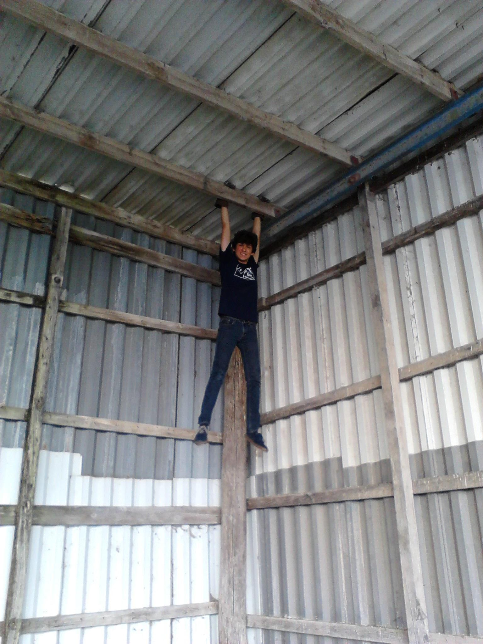 Li'l Bandit - hanging.jpg